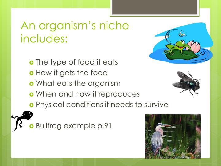 An organism's niche