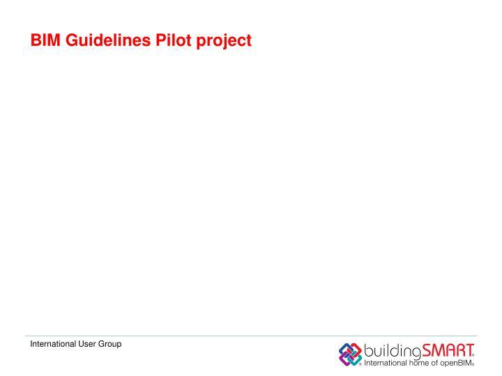 BIM Guidelines Pilot project