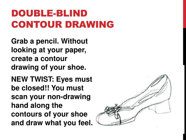 Double-Blind Contour Drawing