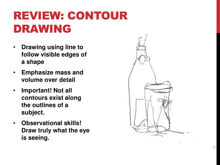 Review contour drawing