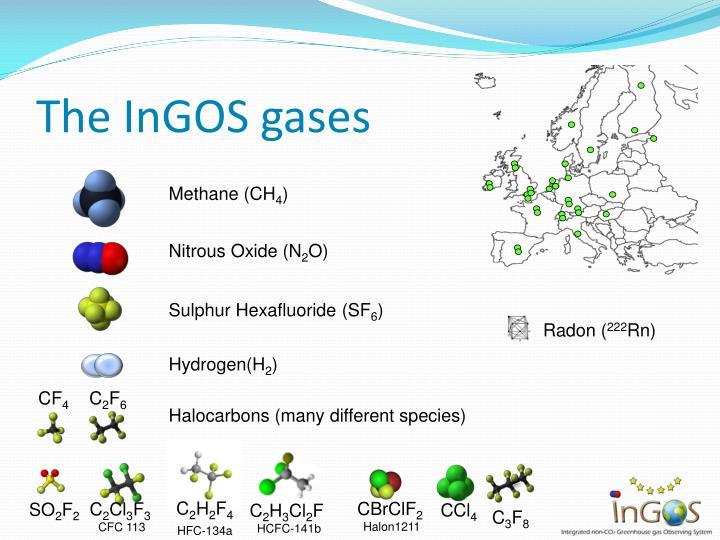 The InGOS
