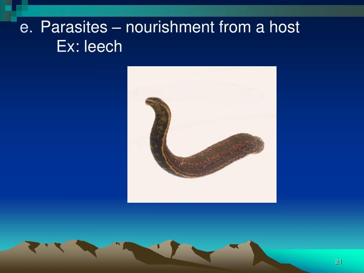 Parasites – nourishment from a host
