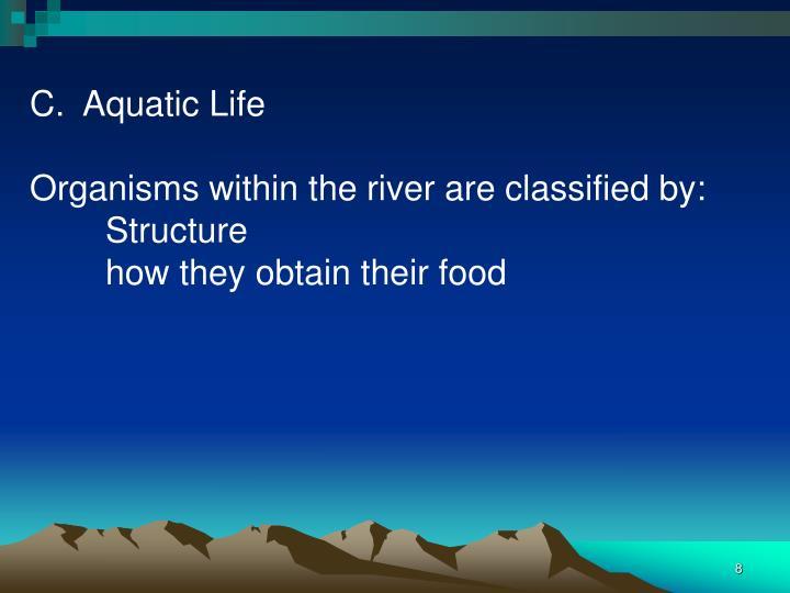 C.  Aquatic Life
