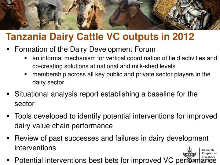 Tanzania Dairy Cattle VC outputs in 2012