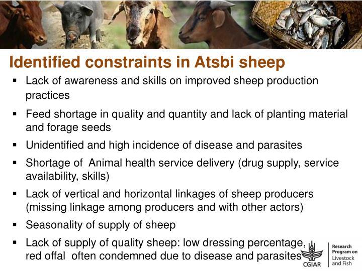 Identified constraints in