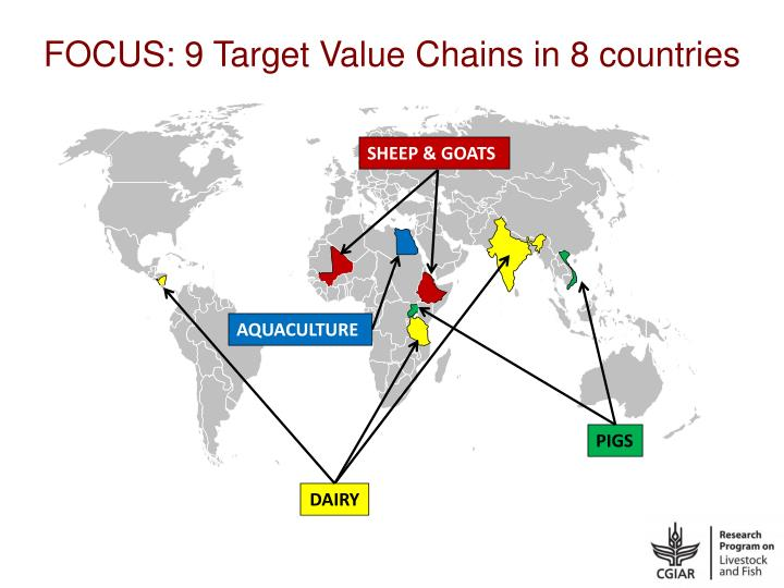 FOCUS: 9 Target Value Chains in 8 countries