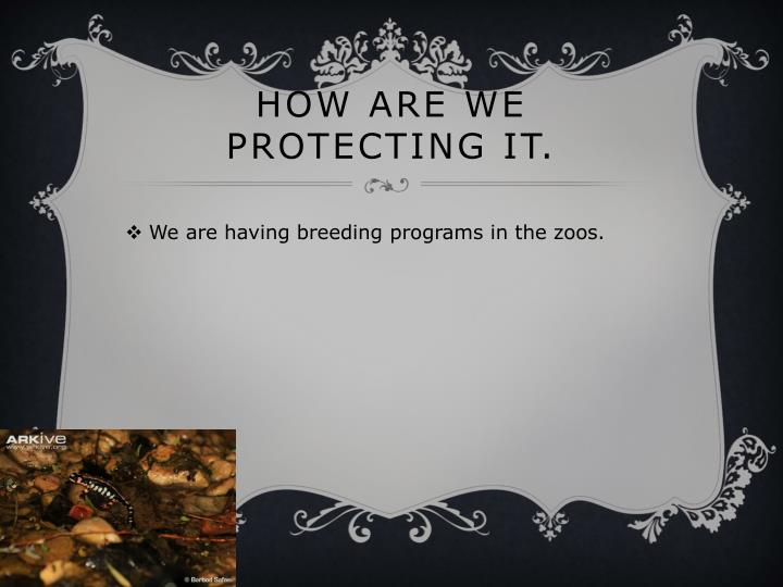 How are we protecting it.