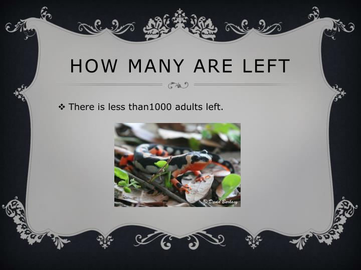 How many are left