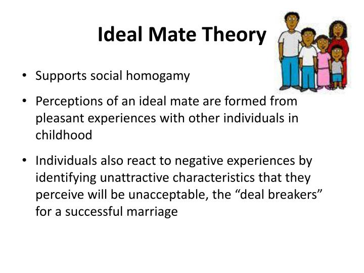 Ideal Mate Theory