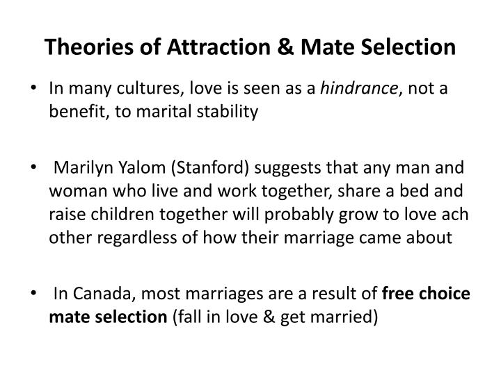 Theories of Attraction & Mate Selection