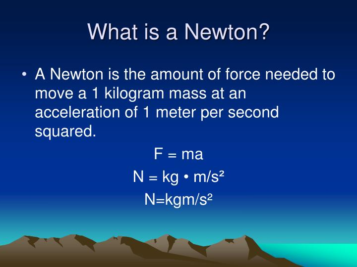 What is a Newton?