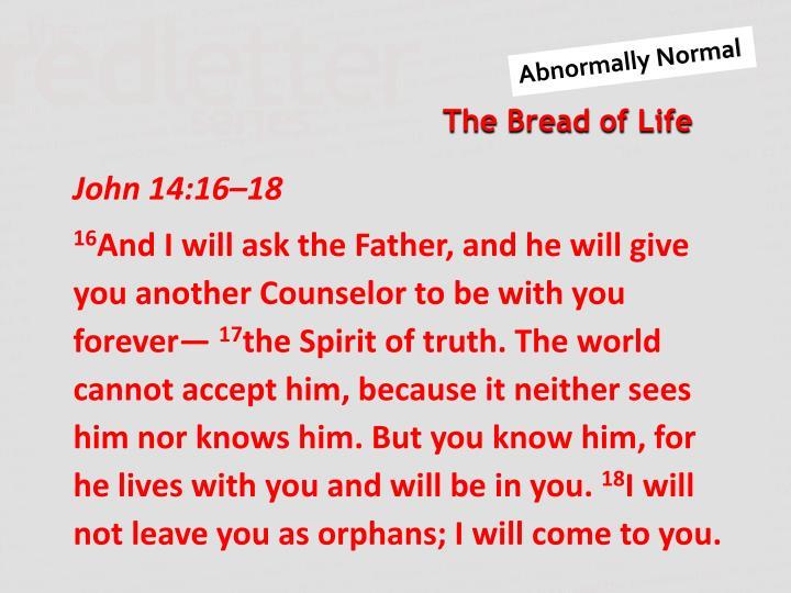 John 14:16–18