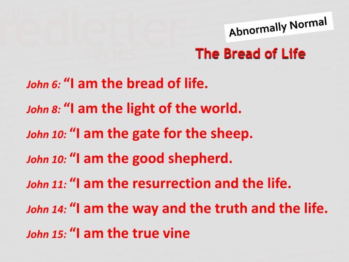 John 6: