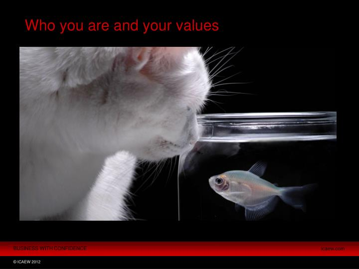 Who you are and your values