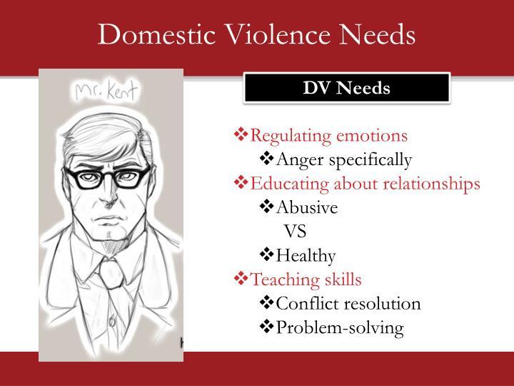 Domestic Violence Needs