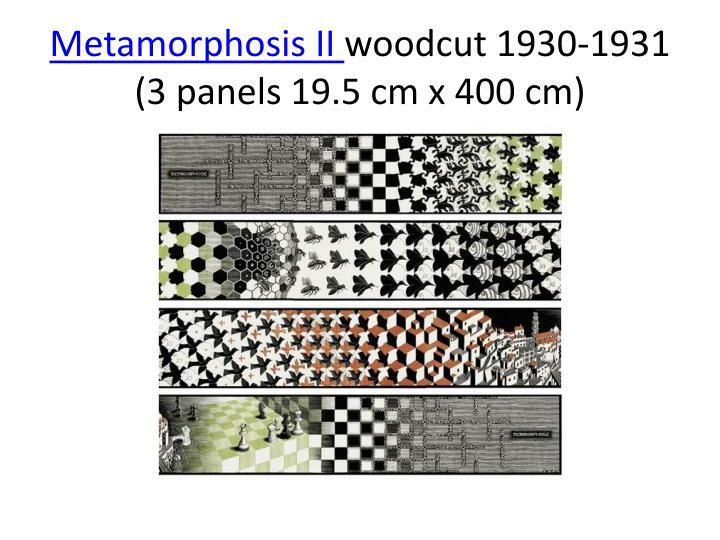 Metamorphosis II