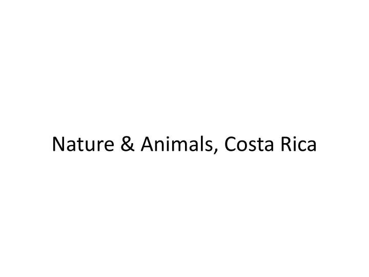 Nature & Animals, Costa Rica