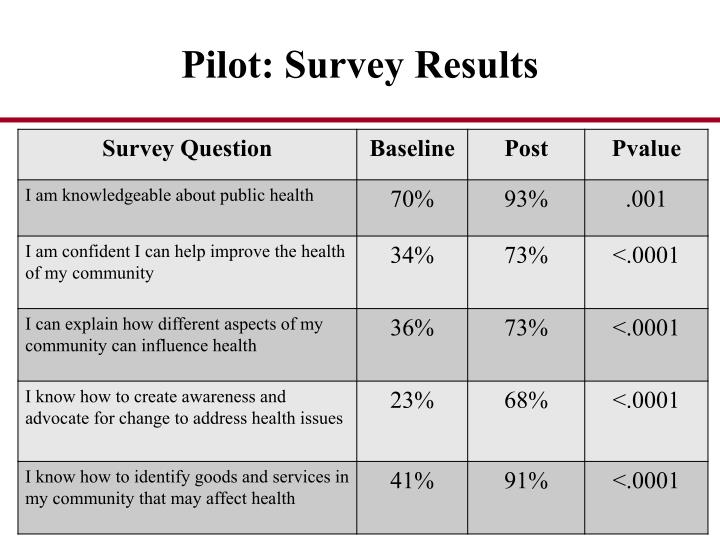 Pilot: Survey Results