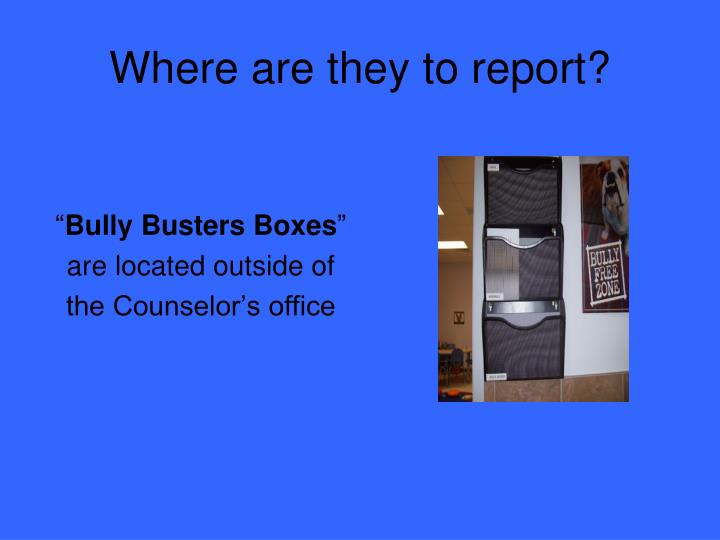 Where are they to report?