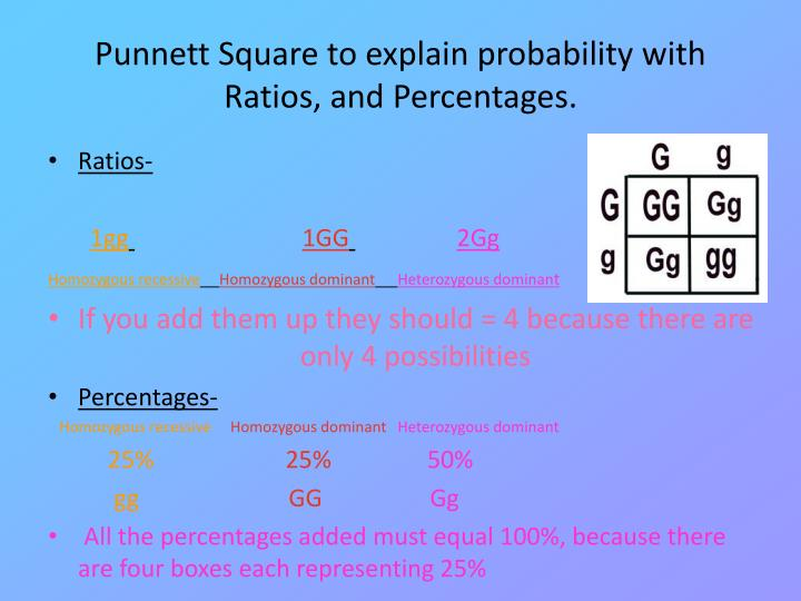 Punnett Square to explain probability with Ratios, and Percentages.
