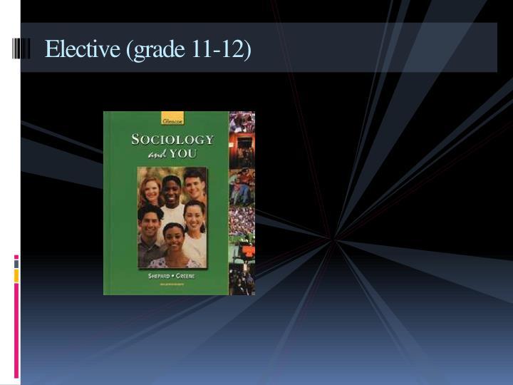 Elective (grade 11-12)
