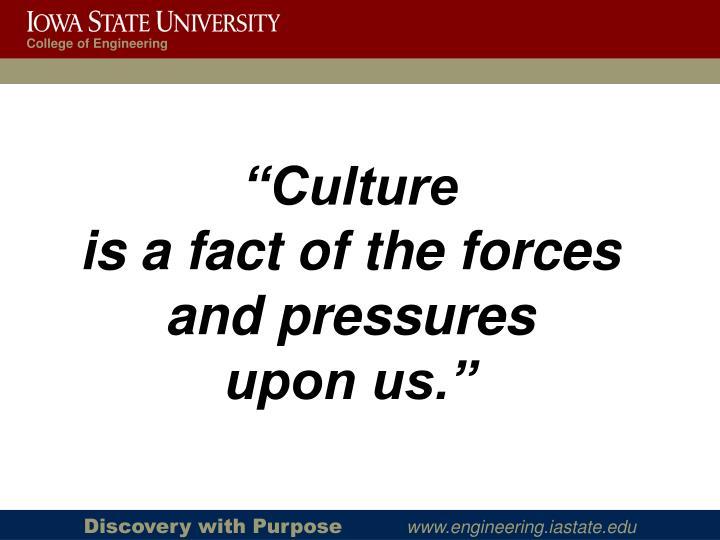"""""""Culture"""