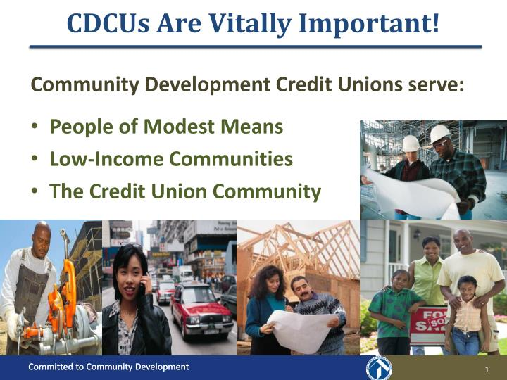 Cdcus are vitally important