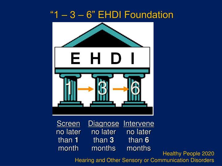 """1 – 3 – 6"" EHDI Foundation"