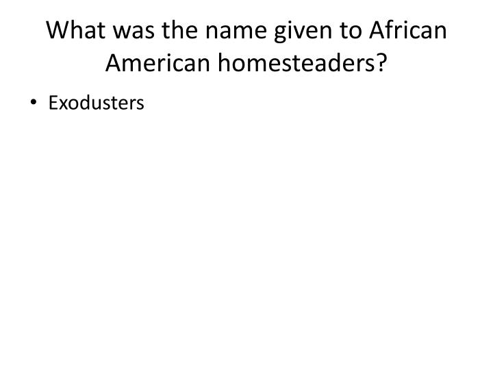 What was the name given to African American homesteaders?