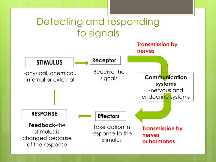 Detecting and responding