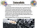naturalistic1
