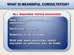 what is meaninful consultation