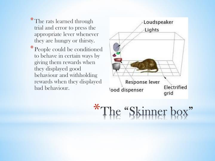 The rats learned through trial and error to press the appropriate lever whenever they are hungry or thirsty.