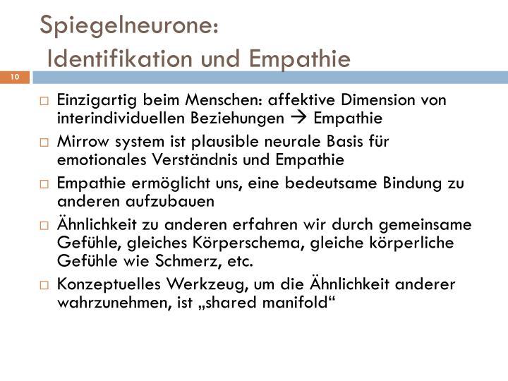 Spiegelneurone: