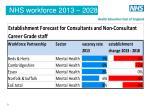 nhs workforce 2013 20282