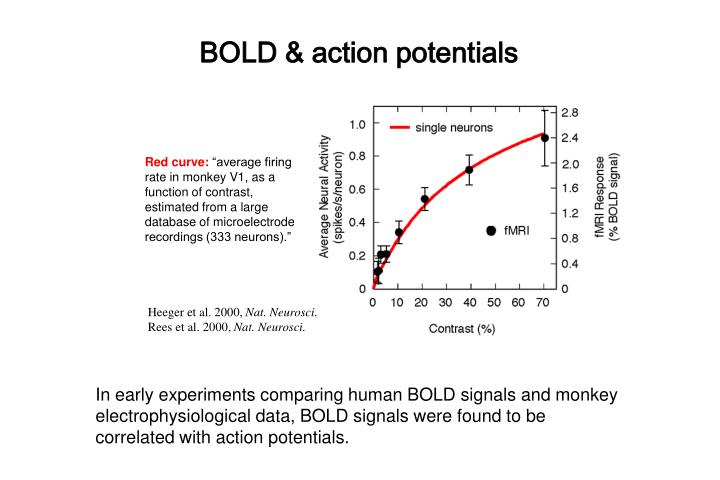 BOLD & action potentials