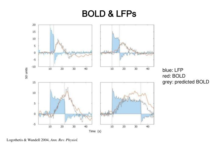 BOLD & LFPs