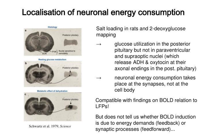 Localisation of neuronal energy consumption
