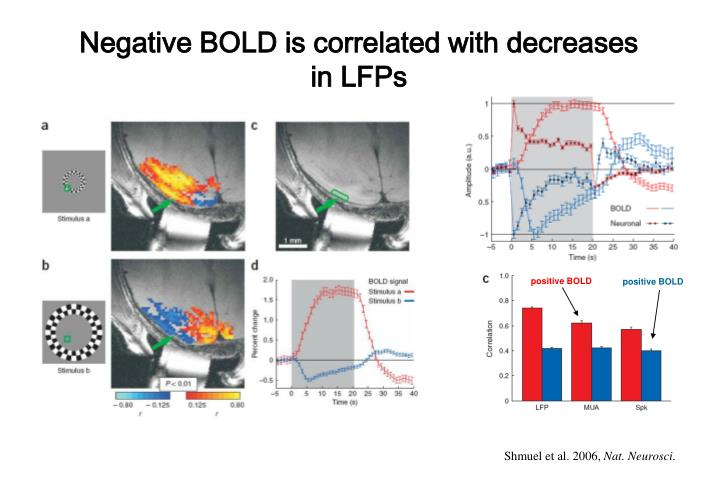 Negative BOLD is correlated with decreases in LFPs