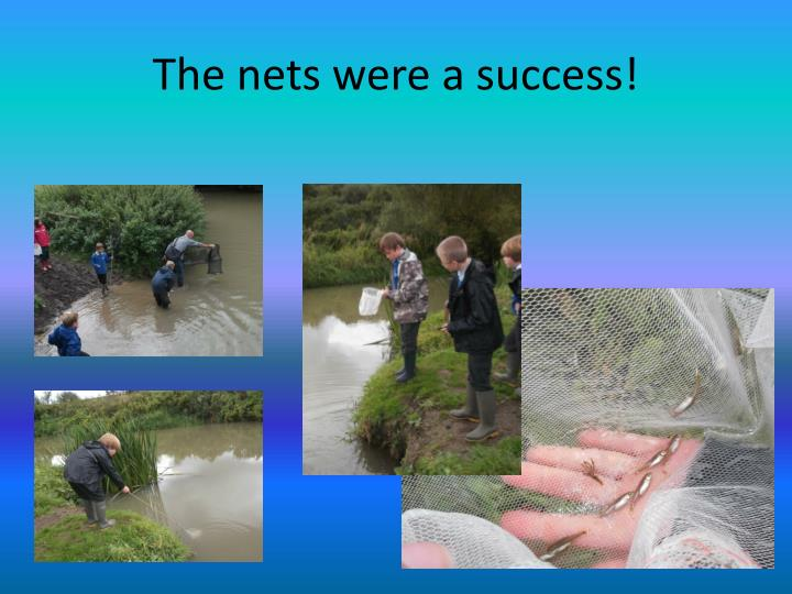 The nets were a success!