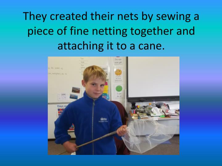 They created their nets by sewing a piece of fine netting together and attaching it to a cane