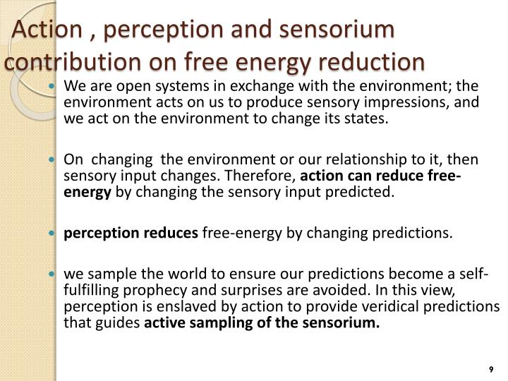 Action , perception and sensorium contribution on free energy reduction