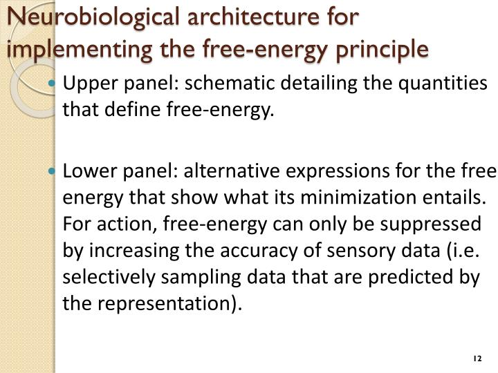 Neurobiological architecture for implementing the free-energy principle