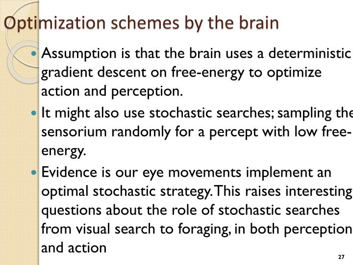 Optimization schemes by the brain