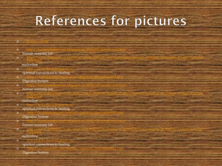 References for pictures