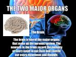 the two major organs