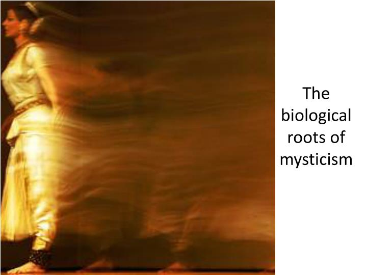 The biological roots of mysticism
