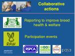 collaborative actions