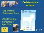 collaborative actions1