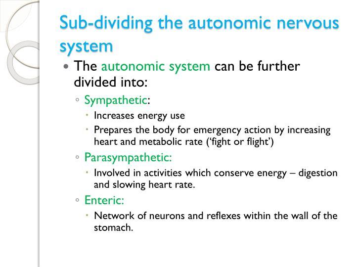 Sub-dividing the autonomic nervous system